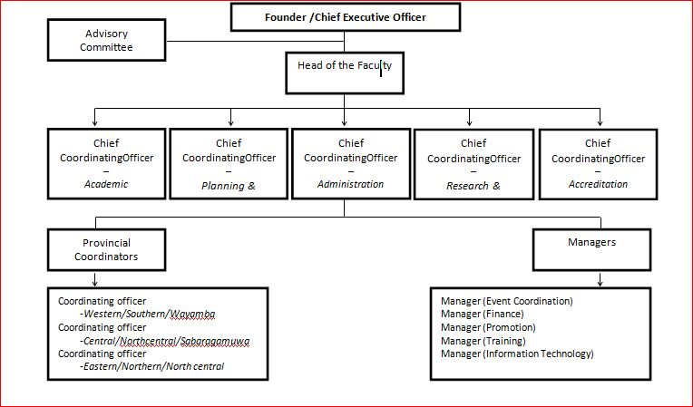 Structure of the National Council for Communication in Healthcare- Sri Lanka